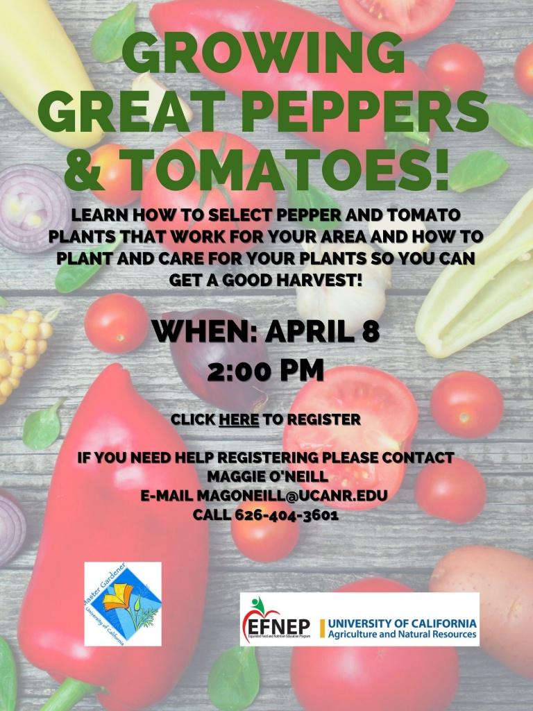 Master Food Preserver Workshops Flyer